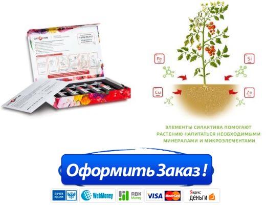 Как заказать Удобрение СилаАктив купить в Новокузнецке